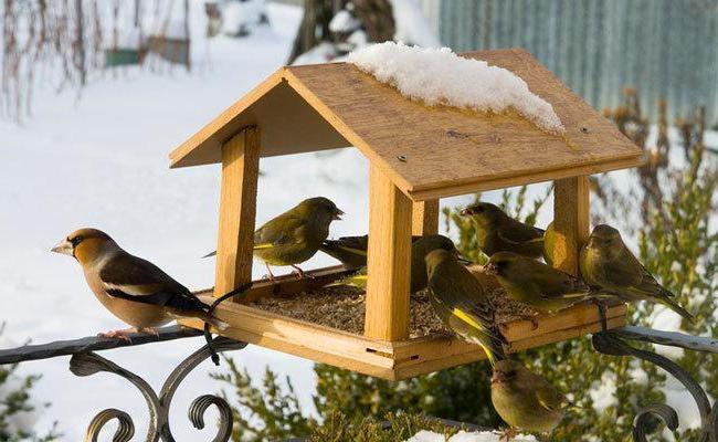 Птицы своими руками оригинальные идеи 93