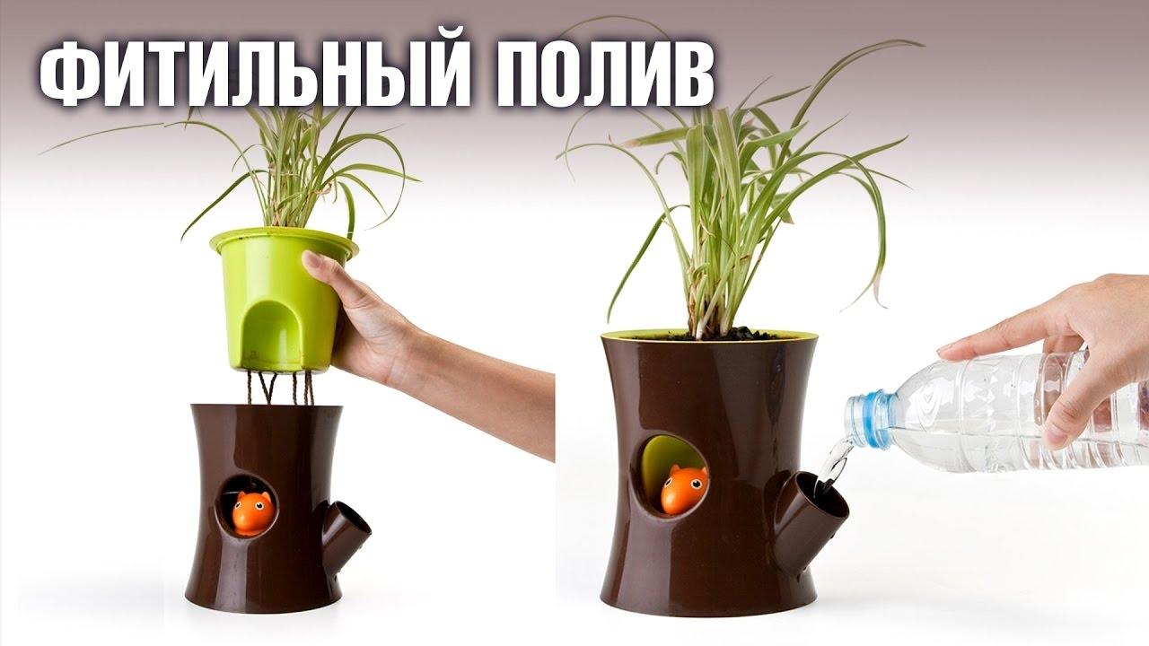Полив цветов с поддоном
