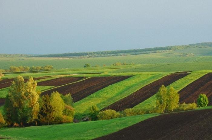 Вид разрешенного использования земель для сельскохозяйственного производства