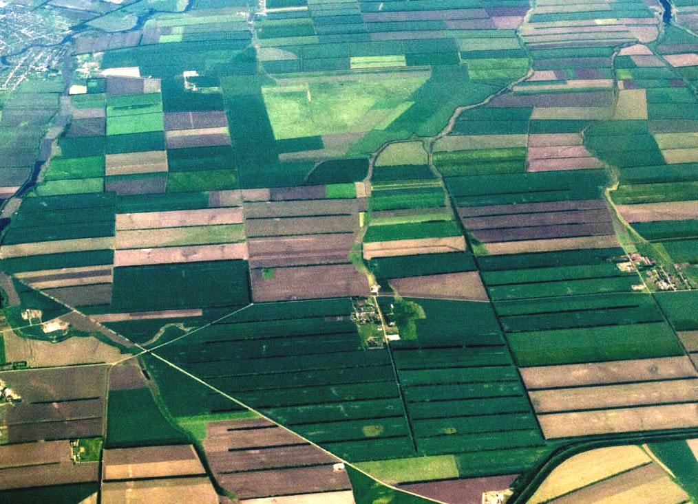 выделение земельной доли